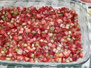 Red & green rhubarb with strawberries